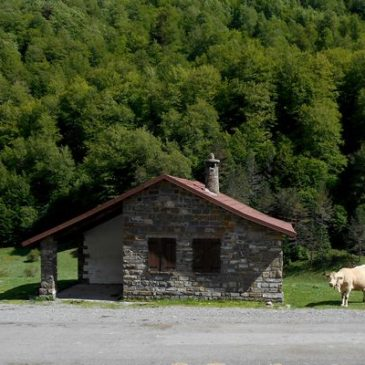 The Pyrenees – Part Four – Malcolm Palmer