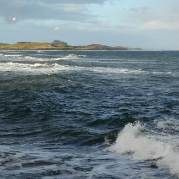 Mary's Blog – Seahouses
