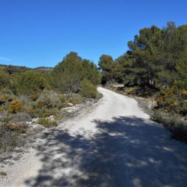 Mary's Blog – Tibi, Maigmo and Alcoy